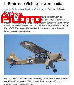 Avion y Piloto