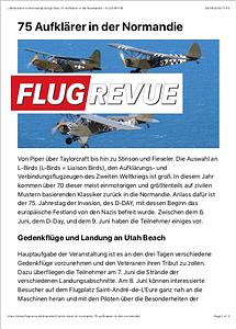 Flugrevue
