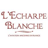 Logo scarf white